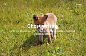 Screenshot from Ghost writing